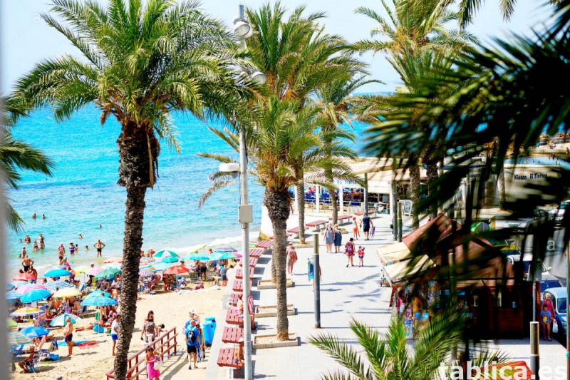 Uwaga! > Zimowanie w słonecznej Hiszpanii w bardzo dobrej ce 4
